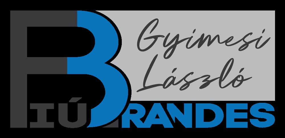 BrandesFiu Logo